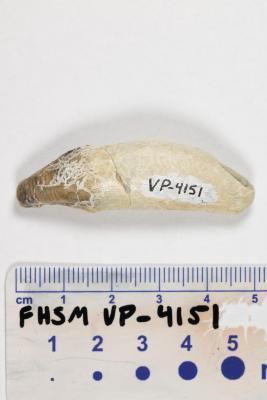 FHSM VP-4151