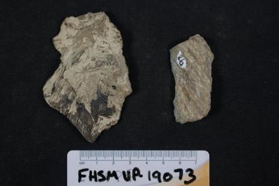 FHSM VP-19073