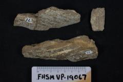FHSM VP-19067