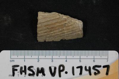FHSM VP-17457